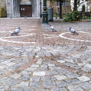photo d'une place bruxelloise avec des pigeons