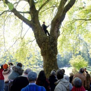 Conteur dans un arbre, devant son public
