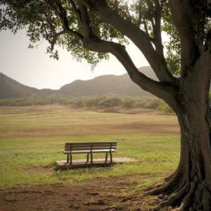Au coeur des contes photo Majarandaa