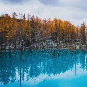 en eaux troubles vasiliki volkova